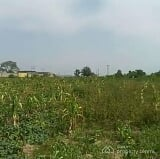 Photo An 11 Plot of Land