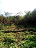 Photo Land for sale Igiwonkogo, federal polytechnic...