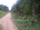 Photo Land for Sale in Uyo