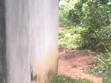 Photo 3 bedroom Land for sale Cross river/ekang road...