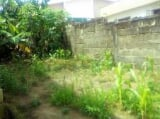 Photo 600 square meter Land for sale Mayfair Ife...