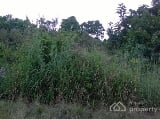 Photo 350 Plots of Empty Land at Mgbirichi Owerri...