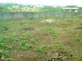 Photo A Plot of Land in Orlu Imo State