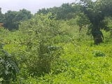 Photo Commercial Land for sale Iseyin, oyo state...