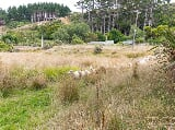 Photo Flat land with fantastic potential. 4.2644...