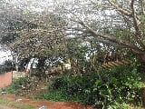Photo 948m² Vacant Land For Sale in Ballito Central