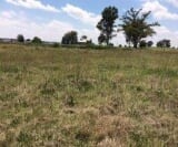 Photo Vacant Land / Plot For Sale in Vaal Bank for R...