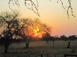 Photo Farms for sale - Vryburg North-West