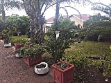 Photo 4 Bedroom House in Pretoria West
