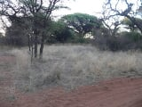 Photo Residential Vacant Land Kathu, Northern Cape -...