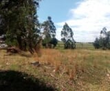 Photo Farm For Sale in Krugersrus for R 50 000 - with...