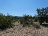 Photo 1,564m² Vacant Land For Sale in La Camargue...