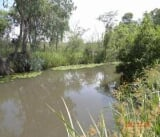 Photo For Sale. R 3 040 -: 4.0 bedroom farm for sale...