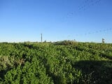 Photo 10Ha Vacant Land For Sale in Nieuwerust