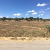 Photo Farms and Land for sale - Bendor Pietersburg...